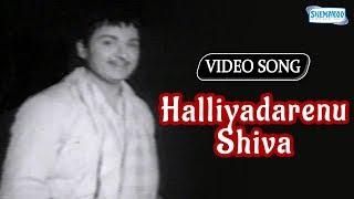 Halliyadarenu Shiva - Mayor Muthanna - Rajkumar Kannada Song
