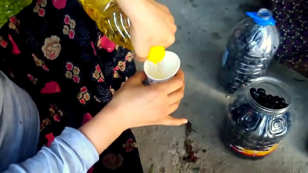 Evde Zeytin Yapımı Videosu