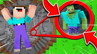 Skyblock: NOOB WPADŁ DO DZIURY POTWORA! | Minecraft Noob vs Pro vs Youtuber!