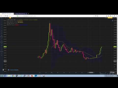 Matic Bitcoin Similarity Charts