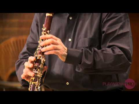 Clarinet lessons with Charles Neidich, 2nd clarinet sonata Brahms