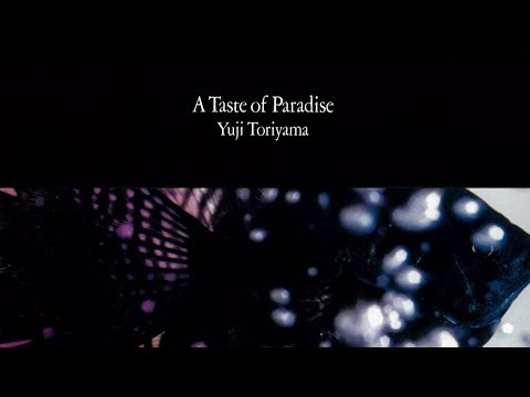 Yuji Toriyama - A Taste of Paradise (album)