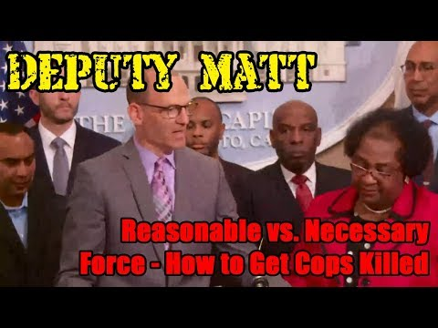 Reasonable vs Necessary Force - How To Get Cops Killed