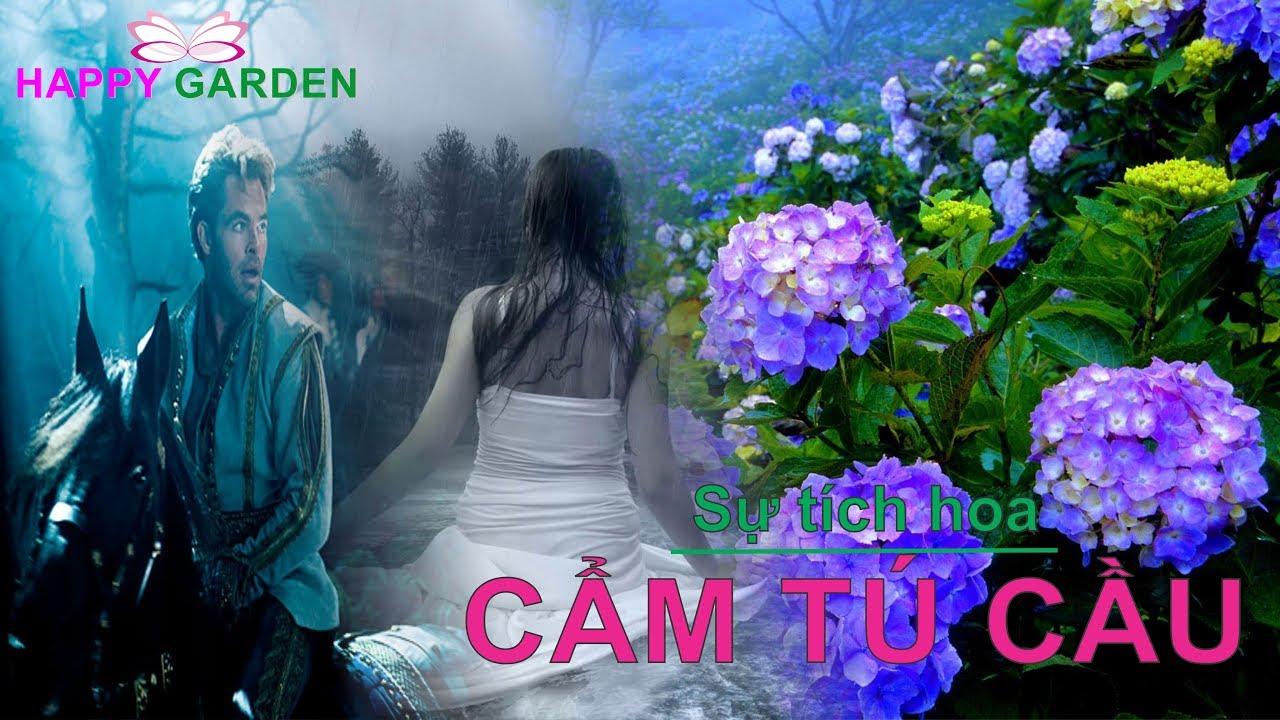 Sự tích hoa cẩm tú cầu – Happy Garden