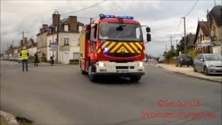 Défilé Congrès des Sapeurs Pompiers du Loiret 2016 / SDIS 45