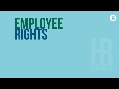 HR Basics: Employee Rights