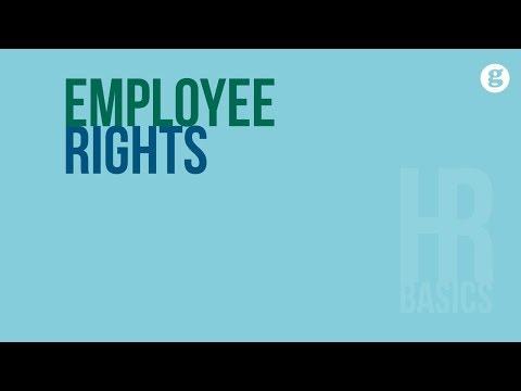 HR Basics: Employee