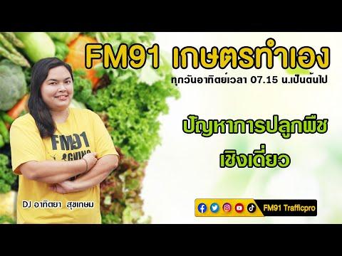 ปัญหาการปลูกพืชเชิงเดี่ยว : FM91 เกษตรทำเอง : 25 กรกฎาคม 2564