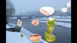 『演歌耳袋帖』 京都雪みれん 水森かおりさん。18−9−28アップ