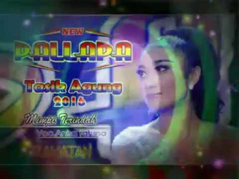 Mimpi Terindah-Anisa Rahma (new pallapa)