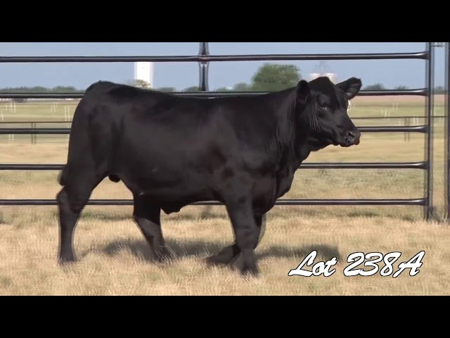 Pollard Farms Lot 238A