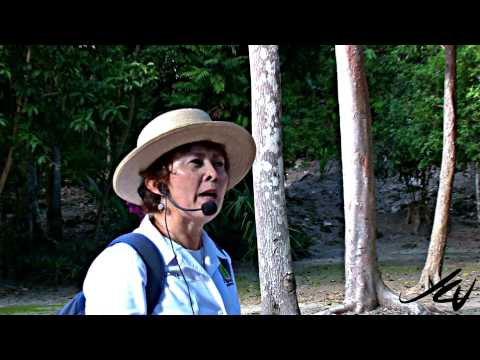 Mayan Long Count calendar - Chacchoben Costa Maya Mexico - YouTube HD