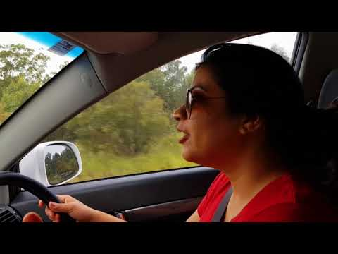 Roadtrip from Sydney to Brisbane