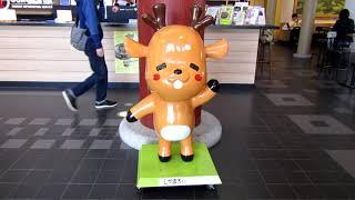 【中古車センター線に特急がやってきた】「阪奈ノンストップ特急」臨時特急まほろば(後編)奈良電車区と奈良駅