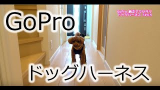 【国内正規品】 GoPro 純正アクセサリ ドッグハーネス - Fetch - ADOGM-...