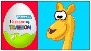 Киндер сюрприз Животные для детей 1 Часть Развивающие мультики про животных
