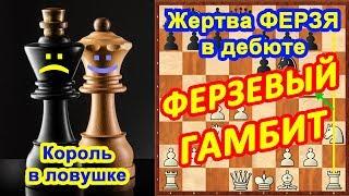 Шахматы ♔ ♕ Шахматные ЛОВУШКИ в дебюте Ферзевый гамбит!
