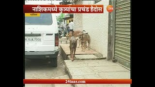 नाशकात कुत्र्यांची दहशत : दिवसाला ३५ जणांना कुत्र्याचा चावा