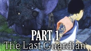 The Last Guardian Gameplay Walkthrough Part 1 - INTRO (Full Game)