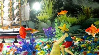 DIY Aquarium || How To Make An Aquarium || Fish Tank/Fish Aquarium