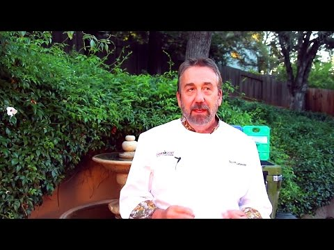 how-to-fry-fish-and-game-in-deep-fryer---the-sporting-chef-tv