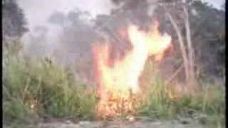 Feu de brousse Nord de la Calédonie Fire north of Caledonia
