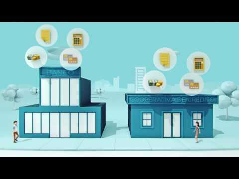 O que é Cooperativa de Crédito?