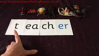 Letters and Sounds Phase 6: Secret Insect Jobs: Suffix 'er'