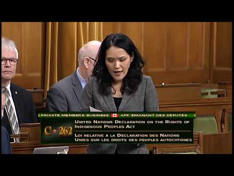 Speech On Bill C-262 - Implementing UNDRIP