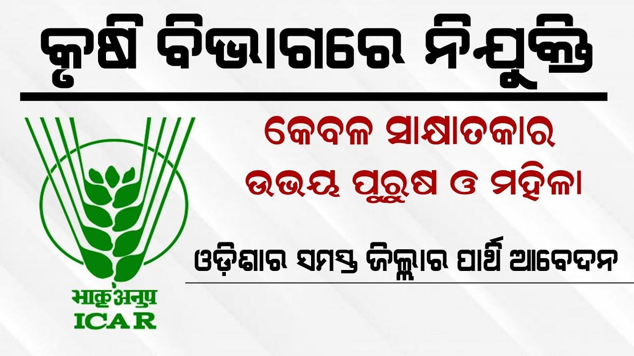 ICAR NRRI Recruitment 2021 – Odisha Job   Krushi Bibhaga Nijukti 2021   Odisha Job Vacancy