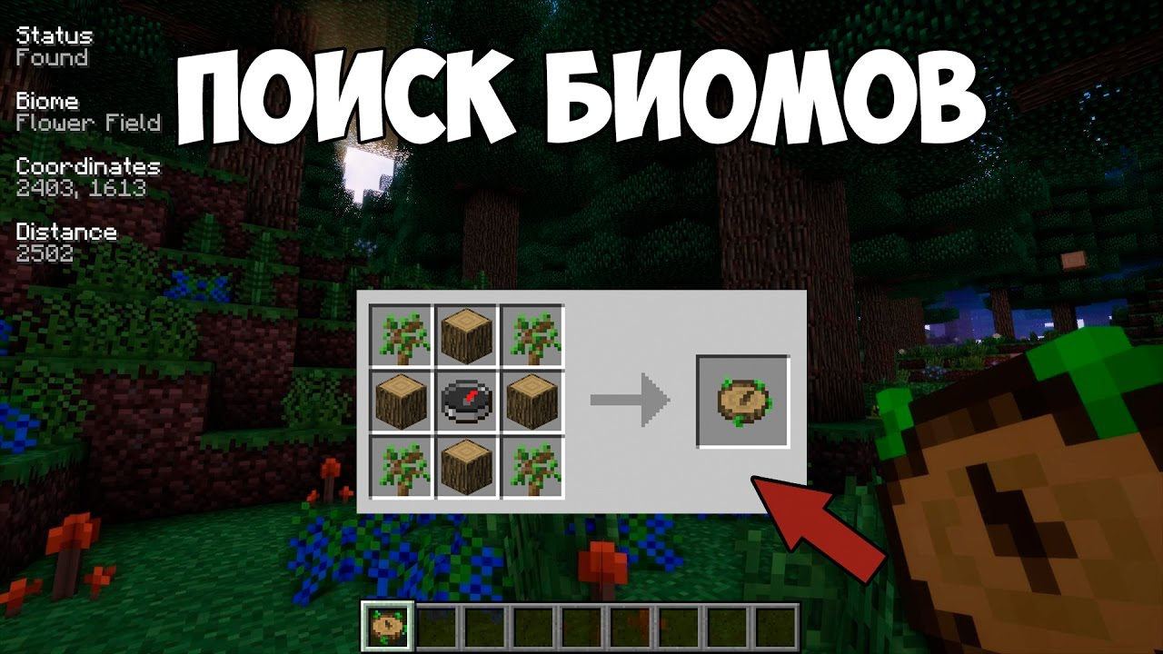 как найти биом в minecraft #10