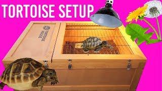 Setting Up My Hermann's Tortoise Enclosure | Zoo Med Tortoise House