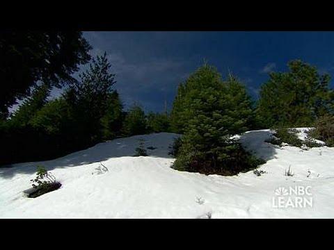 Sierra Nevada Snow Pack & Snow Melt