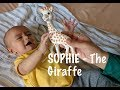 SOPHIE - The Giraffe (Teether Toy)