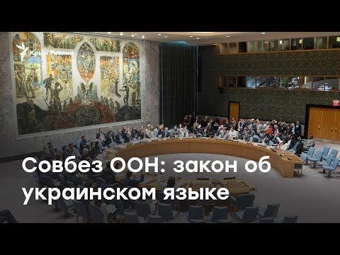 Заседание Совбеза ООН: языковой закон в Украине   LIVE