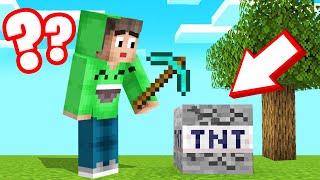 ALL BLOCKS Are SECRETLY TNT In MINECRAFT! (Troll)