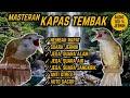 Suara Masteran Kapas Tembak Nembak Rapat Jeda Terapi Air Alam Anti Stres  Mp3 - Mp4 Download