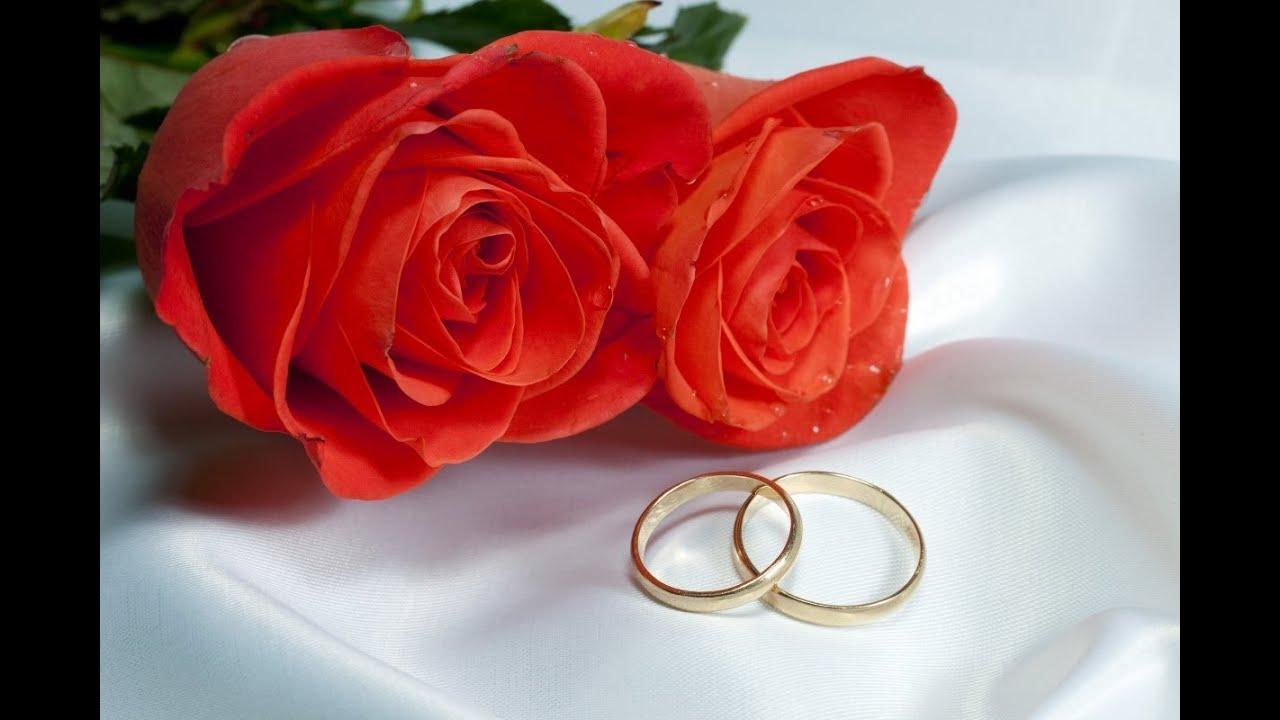 Два кольца свадебных картинка