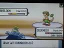 Fighting Pokemon Diamond/Pearl Wi-Fi Battle