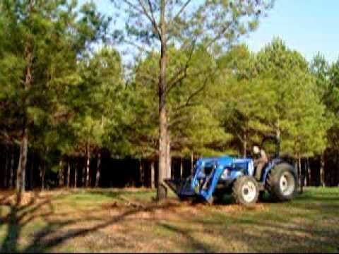 Tree Removal Homemade Root Cutter Youtube