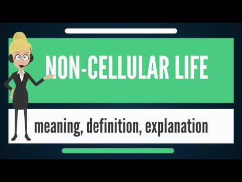 What is NON-CELLULAR LIFE? What does NON-CELLULAR LIFE mean? NON-CELLULAR LIFE meaning & explanation