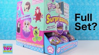 Surprizamals Series 7 Blind Ball Stuffed Animals Opening | PSToyReviews