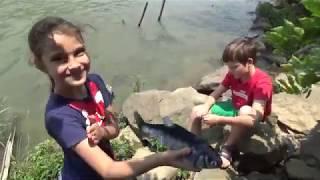 Китайские удилища и рыбацкие снасти Первая рыбалка Жизнь в Китае 195