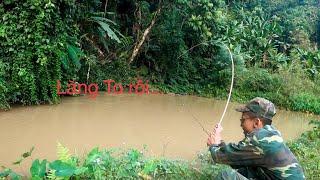Vào Rừng Sâu Câu Cá Lăng - Cá Chạch - Bằng Cần Trúc - Phê