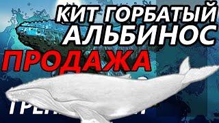 Продажа Альбиноса / РР3 [ Русская рыбалка 3.9 Гренландия]