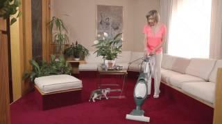 abituare il gattino agli stimoli della sua nuova casa
