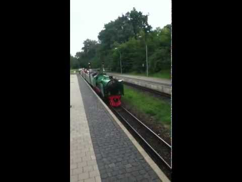 14'' Guage Dresden Park train