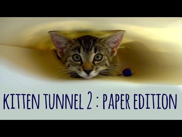 Kitten tunnel: version 2 (paper edition)