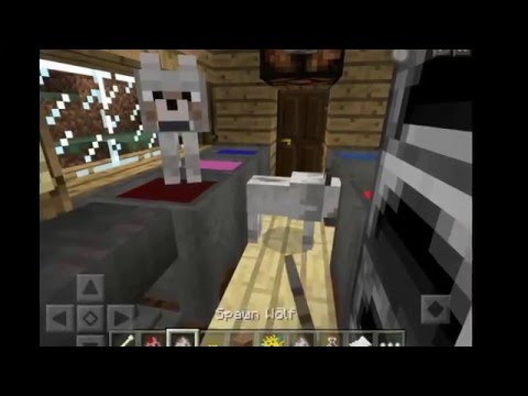 Tutorial In Minecraft |Minecraft Gameplay| How To Put Potions In Cauldrons And Name Your Pet MCPE!