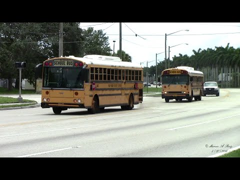 PALM BEACH DISTRICT SCHOOL BUSES IN ACTION